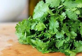 Learn about the medicinal properties of coriander