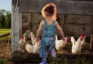 The story of the hen girl