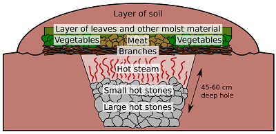 The middle layer of the soil
